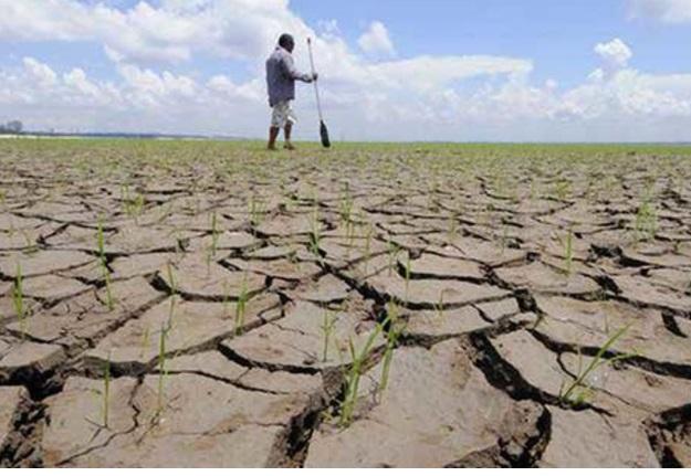 Escasez hídrica y altas temperaturas: Santiago sufre su tercer julio más seco en 72 años