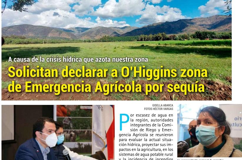 Solicitan declarar a O'Higgins zona de Emergencia Agrícola por sequía