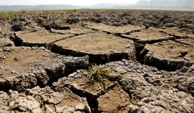 Últimas lluvias no son suficientes y llevan al gobierno a decretar emergencia agrícola en cuatro regiones