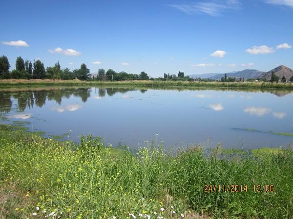 Canal Silvano