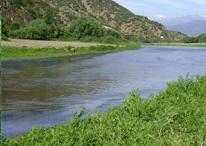 Estero Zamorano